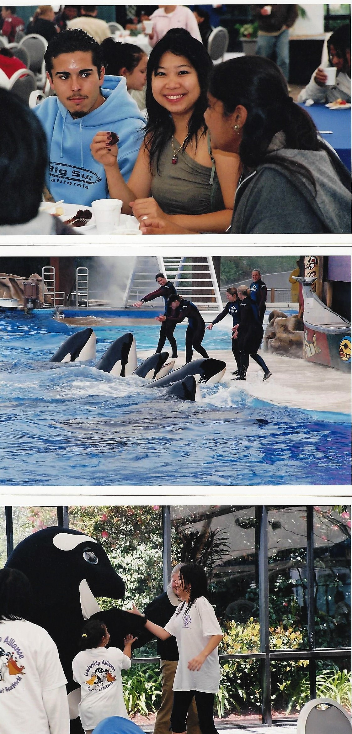 Seaworld photo #5
